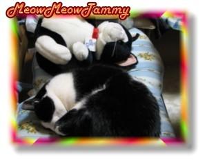 3姉弟_Tammy