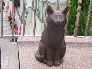 異人館の猫